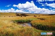 四川省甘孜州炉霍县湿地景区将建房车游基地