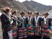 """""""西藏第一块农田""""举行开耕仪式"""