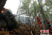 四川九龙森林火灾已全部扑灭 无人机助力灭火