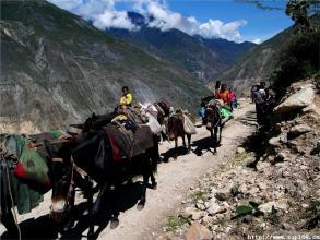 328 cultural relics along ancient Tea-Horse Road exhibited in Gansu