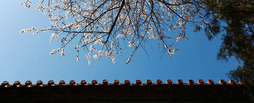 """颐和园后山的 """"桑耶寺"""""""