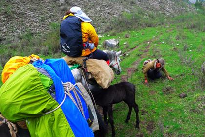 8-Day Songpan Qizanggou Trekking Tour with Horse Riding