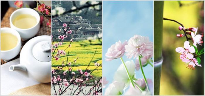 风象丨谷雨:牡丹花正好,山川黛色青