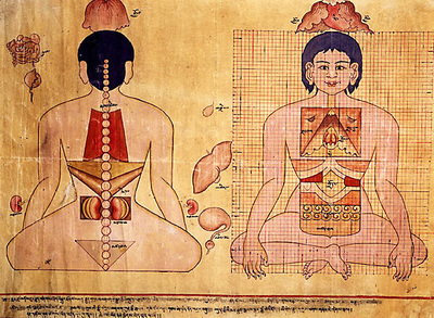 The inheritance and development of the thousand-year old Tibetan medicine