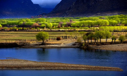 Ecological civilization makes gains in Tibet