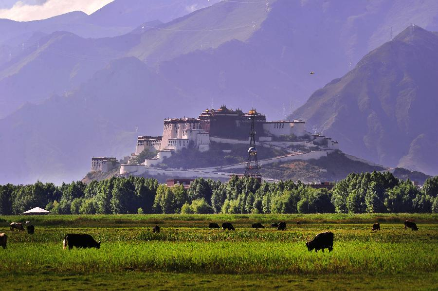 More Tibet wetlands get state backing