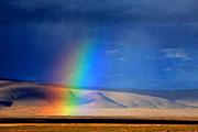 散落人间的七色彩虹