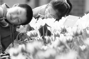 """西藏自治区发改委开展""""关爱盲童 温暖五四""""爱心慰问活动"""