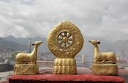 据说这座寺庙求财很灵 大家都去拜 为啥去的时候还必须得带酒?
