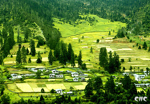 Nyingchi creates an eco-tourism season