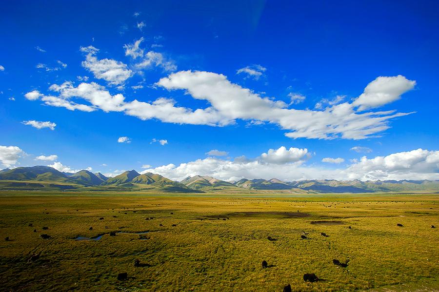 Development of Tibet grasslands eco-tourism