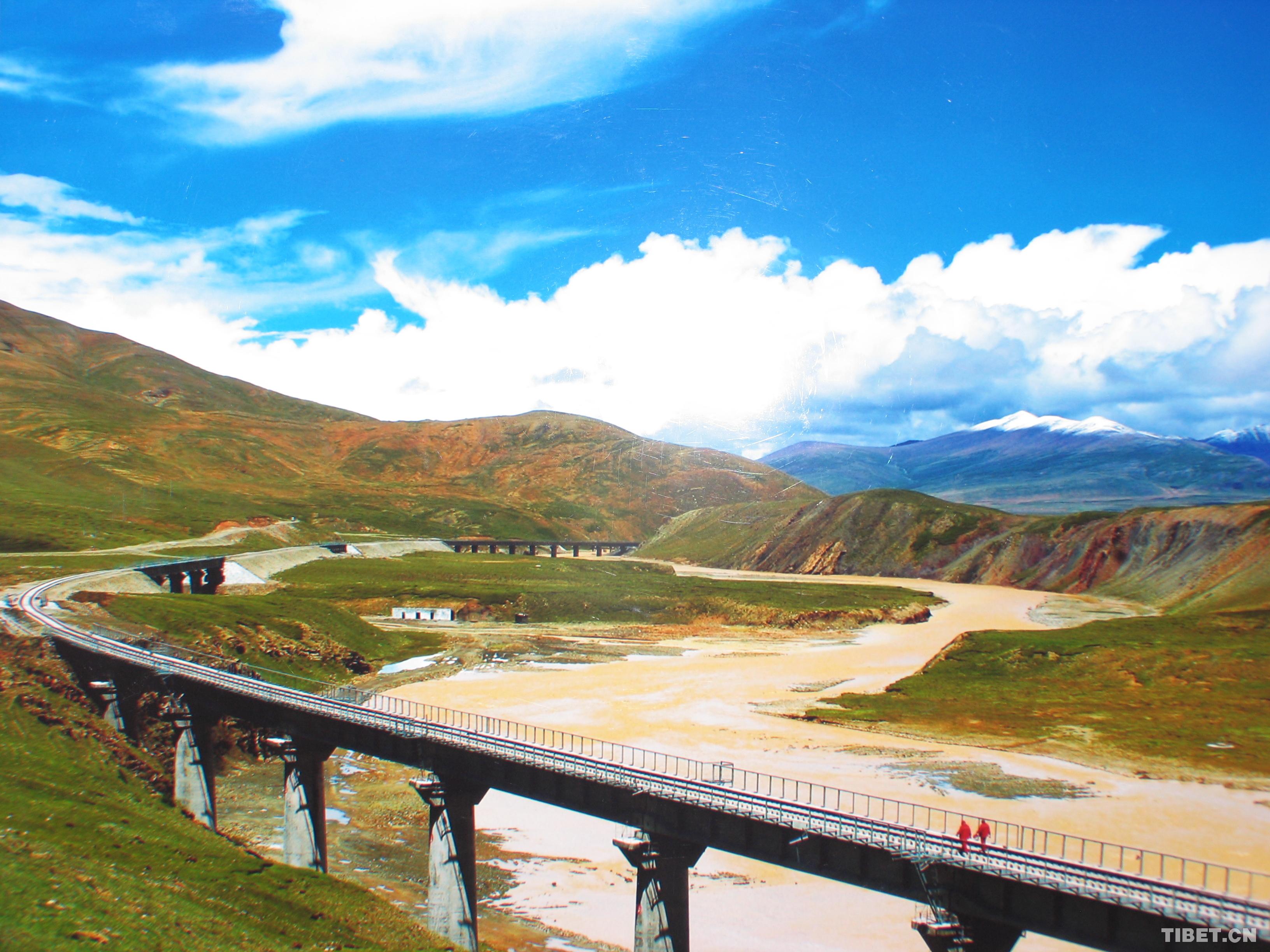 青藏铁路沿线设置了动物通道,每年春夏季节,分布在可可西里各地的