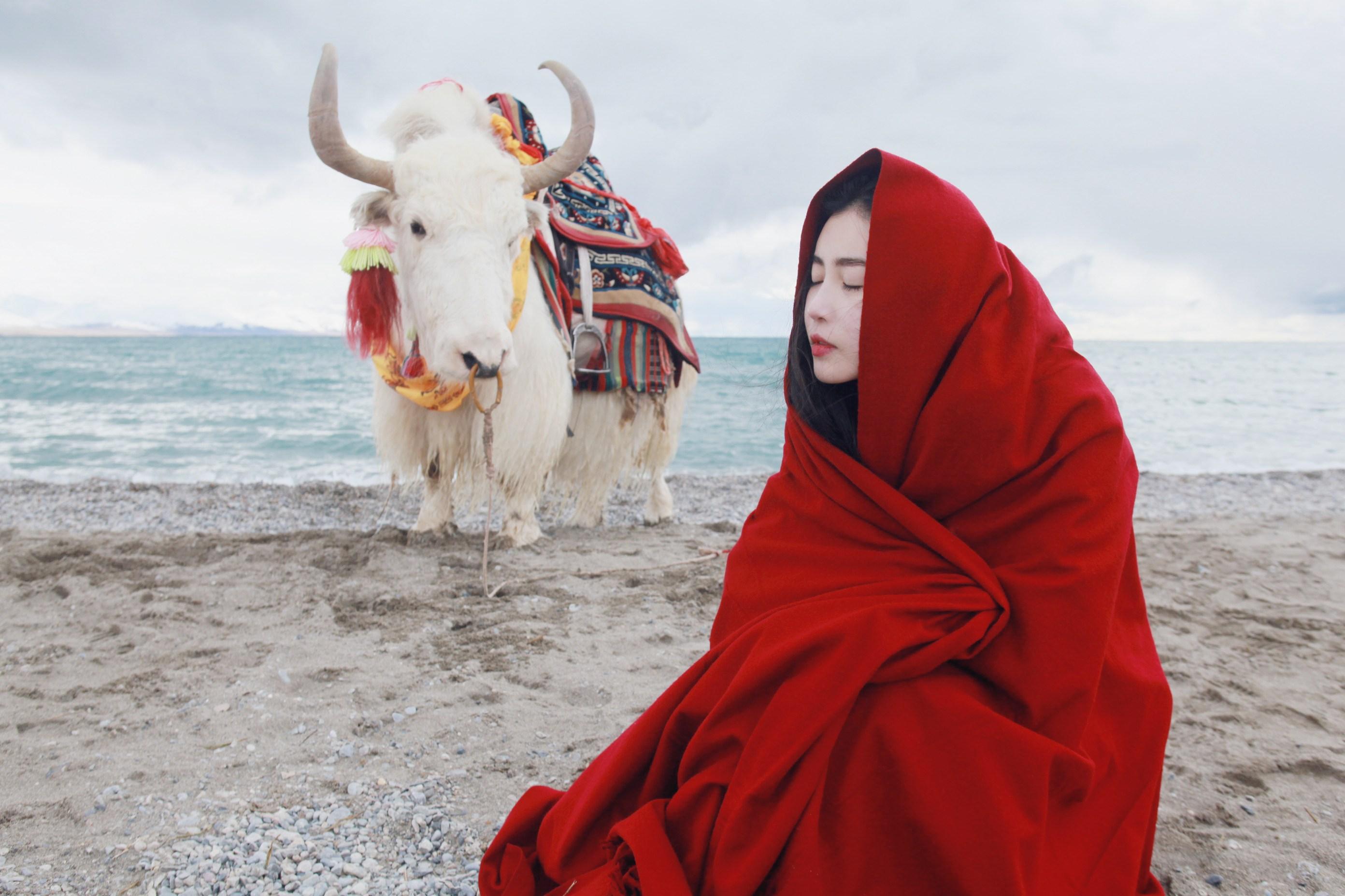 Tibet goes hi-tech to promote tourism, culture
