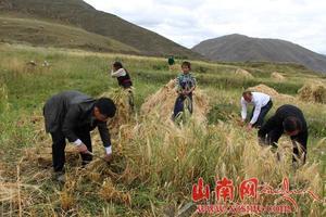安徽省第六批援藏工作队积极推进错那县项目建设