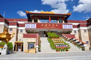 西藏博物馆首届涂鸦作品展开幕