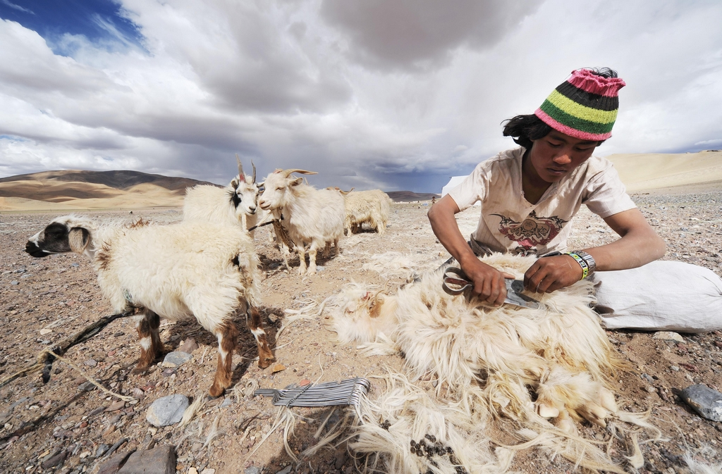 Photos: Nomads in northern Tibet