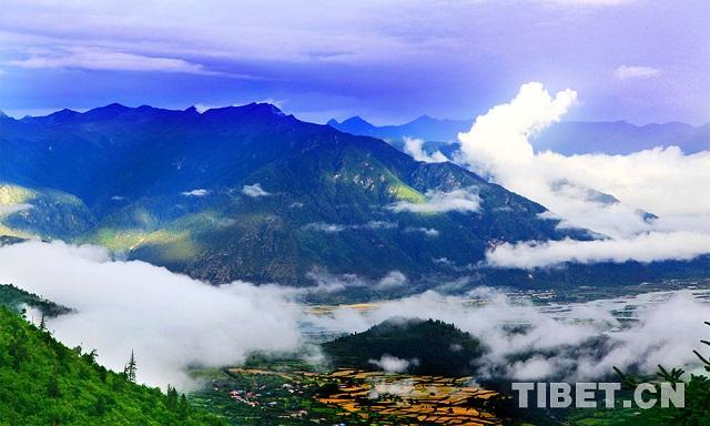 Photo: Magical Tibetan medicine