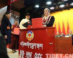 旦科补选为政协第十届西藏自治区委员会副主席