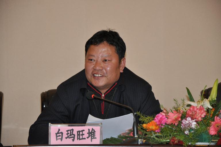 Pema Wangdu elected new Lhasa Party secretary