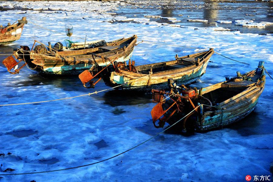 Thick sea ice seen at Jiaozhou Bay, Qingdao