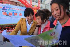 西藏劳动就业服务局启动2017年就业援助月专项活动