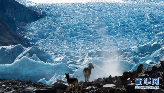 Magnificent views of the Gangbu Glaciers