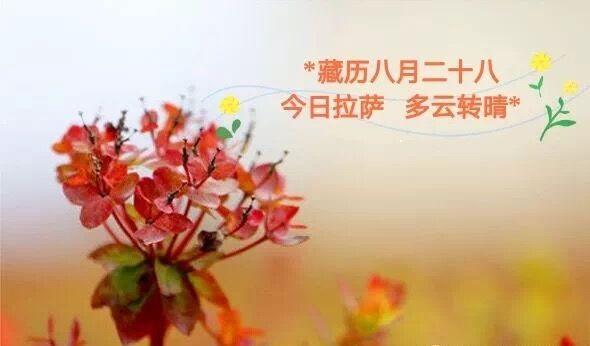 西藏代表抵达北京 | 藏闻早餐10.17