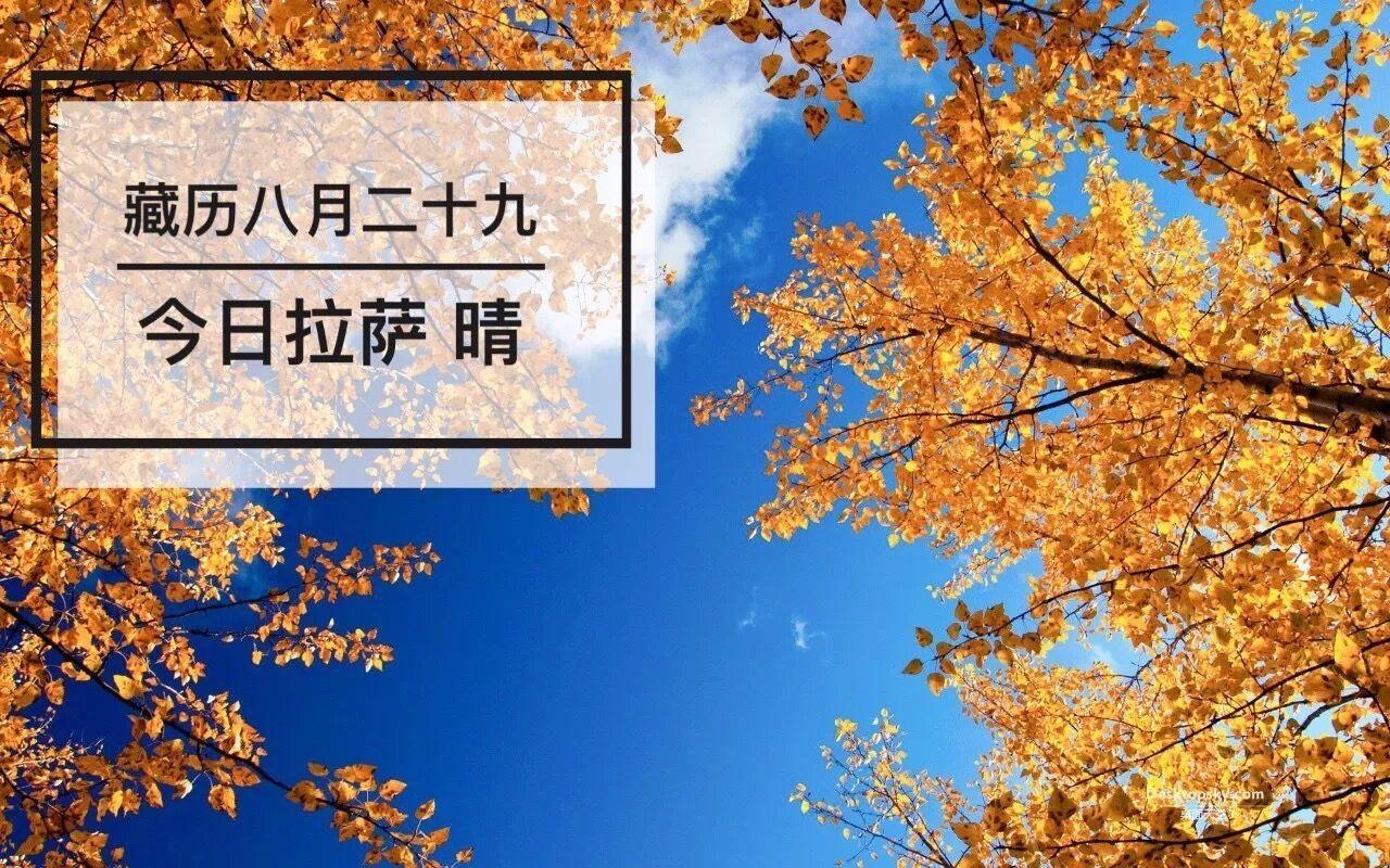 西藏十九大代表认真参会建言 | 藏闻早餐10.18