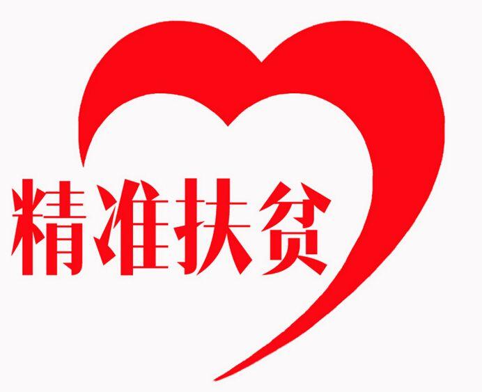 西藏十九大代表聚焦精准扶贫精准脱贫