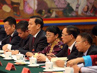 十九大西藏代表尽显风采