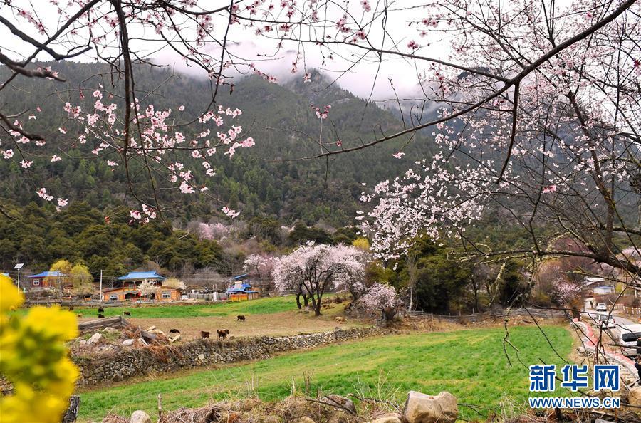 建设美丽西藏 永葆碧水蓝天