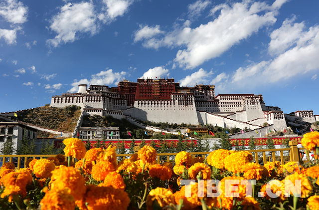 Potala Palace decorated to welcome the 19th CPC National Congress