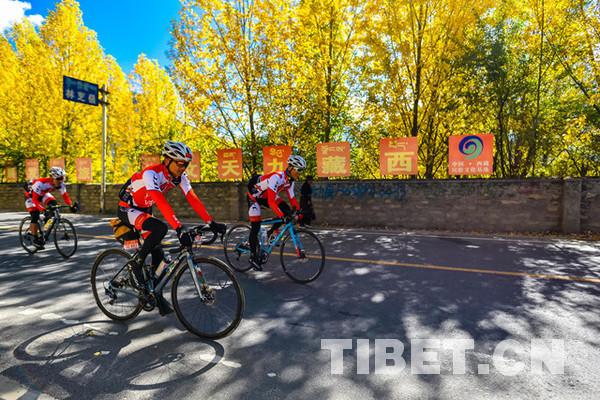 Der Rennradfahrer Zhadun