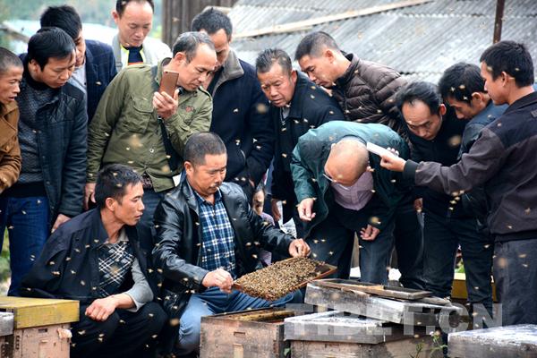 Guizhou: Imkerschulungen verhelfen Ärmeren zu Wohlstand