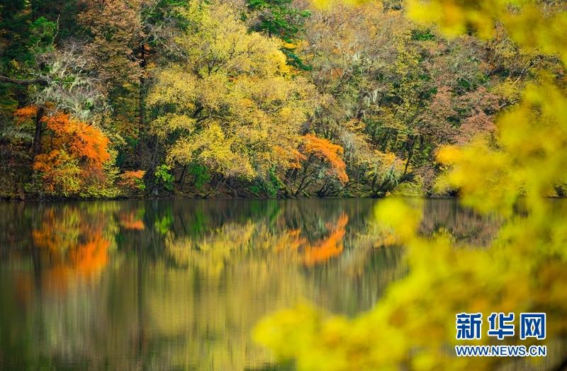 Beautiful autumn scenery of Jiuzhaigou in SW China