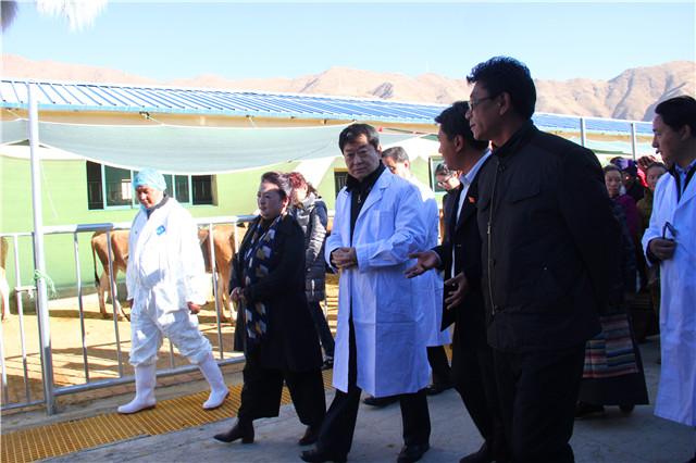 中央宣讲团走进西藏第一个易地扶贫搬迁点宣讲十九大精神