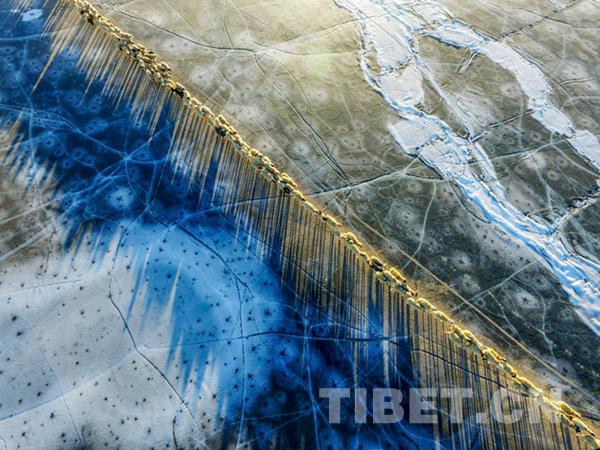 """为何《冰湖上的转场》组图能夺""""西藏风情""""摄影大赛最高奖?"""