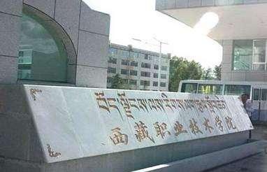西藏职业技术学院院长采守宽谈西藏职教发展
