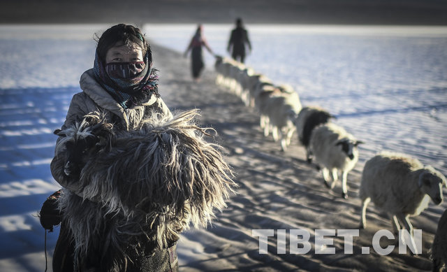Tibet-Stil im Bild