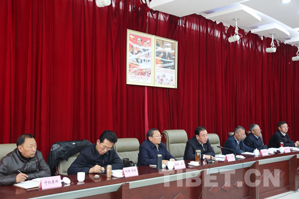 【学思践悟·十九大】西藏召开全区党外人士学习贯彻党的十九大精神座谈会