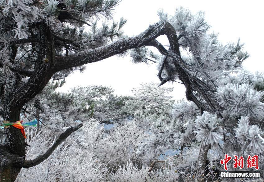 Wunderschöner Raufrost in Lushan