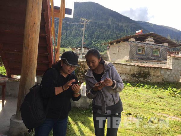 Changes to medium in Tibet