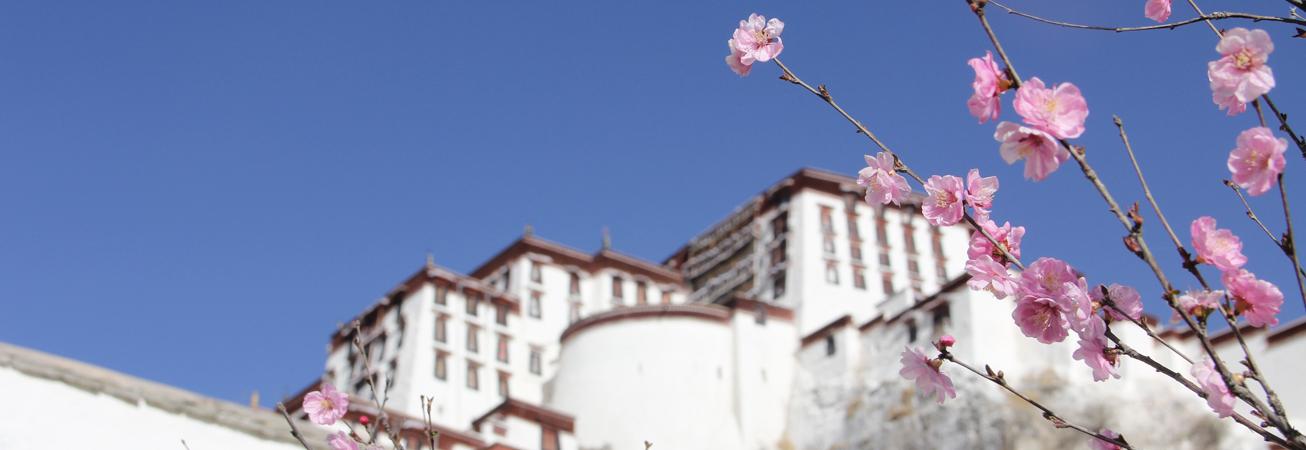 《西藏时光》第一集:家园