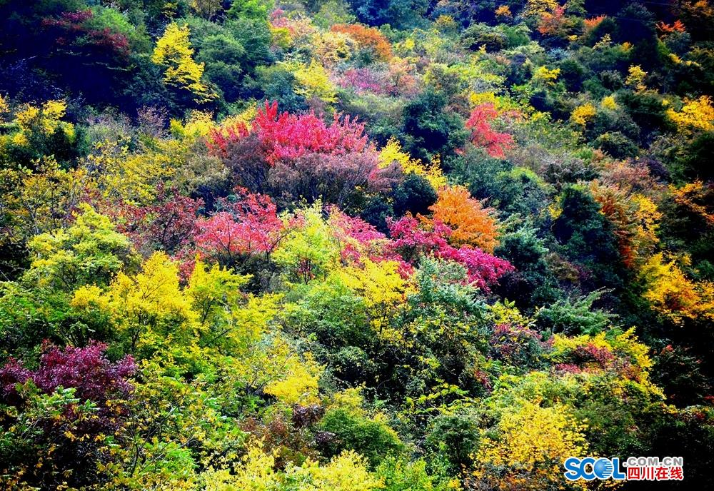 Autumn scenery in China's Sichuan Province