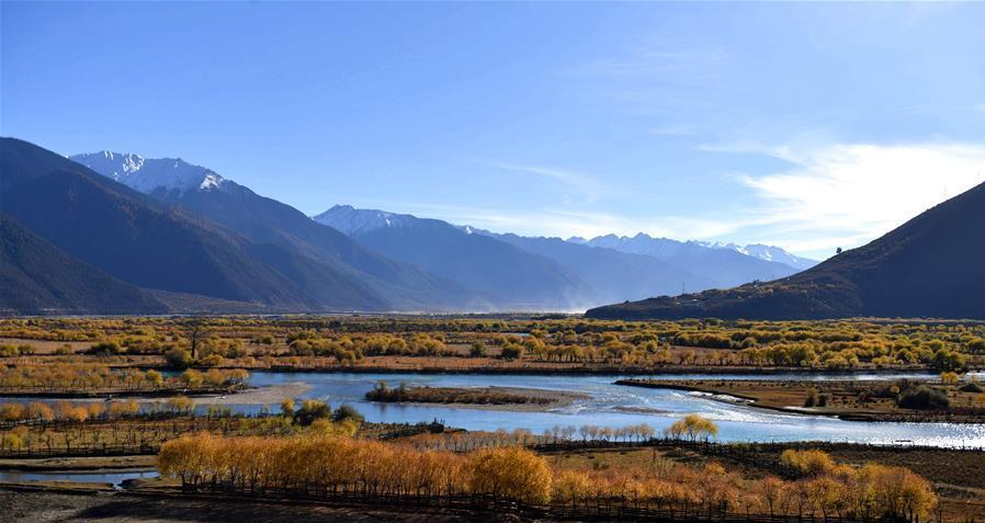 Tropical area in southern Tibet receives record number of tourists