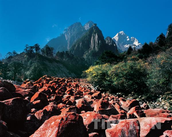 文化旅游业发展满足四川甘孜人民美好生活需要