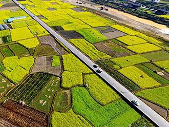 """盘点:习总书记指示建设""""四好农村路"""" 看各地乡村公路成一景"""