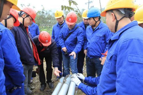 西藏全县实现农电统一管理 国网西藏电力提前完成16县农电代管任务