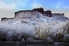 雪中的布达拉宫