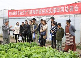 情系三江 续写辉煌——记重庆市第八批援藏工作队